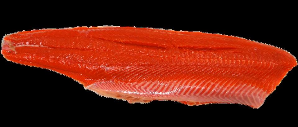 wild-salmon